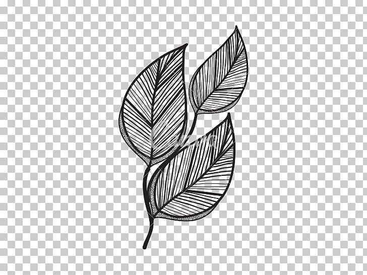Leaf Computer Icons PNG, Clipart, Black And White, Branch, Clip Art, Computer Icons, Drawing Free PNG Download
