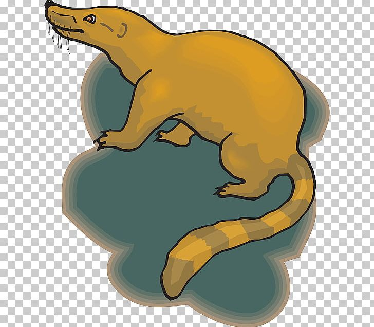 Skunk Windows Metafile PNG, Clipart, Animal, Animals, Bear, Carnivoran, Cartoon Free PNG Download