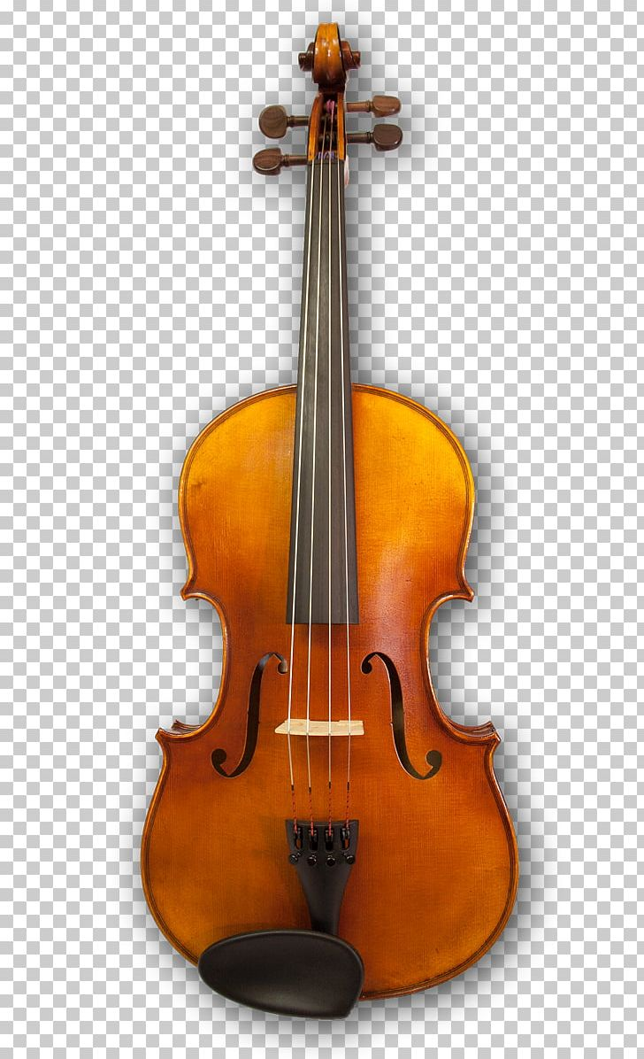 Cello Violin Musical Instruments Viola String Instruments PNG, Clipart, Bass Guitar, Bass Violin, Bow, Bowed String Instrument, Cellist Free PNG Download