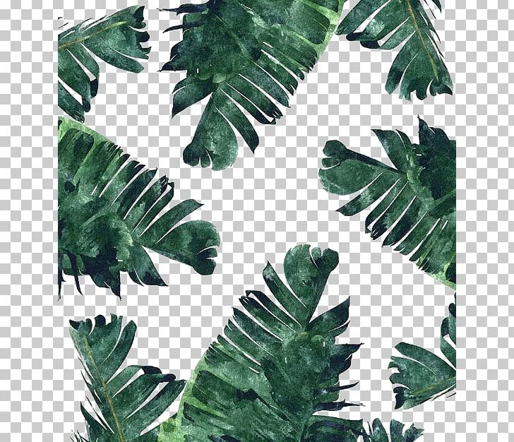 Banana Leaf Canvas Print Watercolor Painting PNG, Clipart, Banana, Canvas, Fern, Ferns And Horsetails, Fruit Nut Free PNG Download