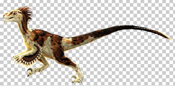 Velociraptor Primal Carnage: Extinction Feathered Dinosaur