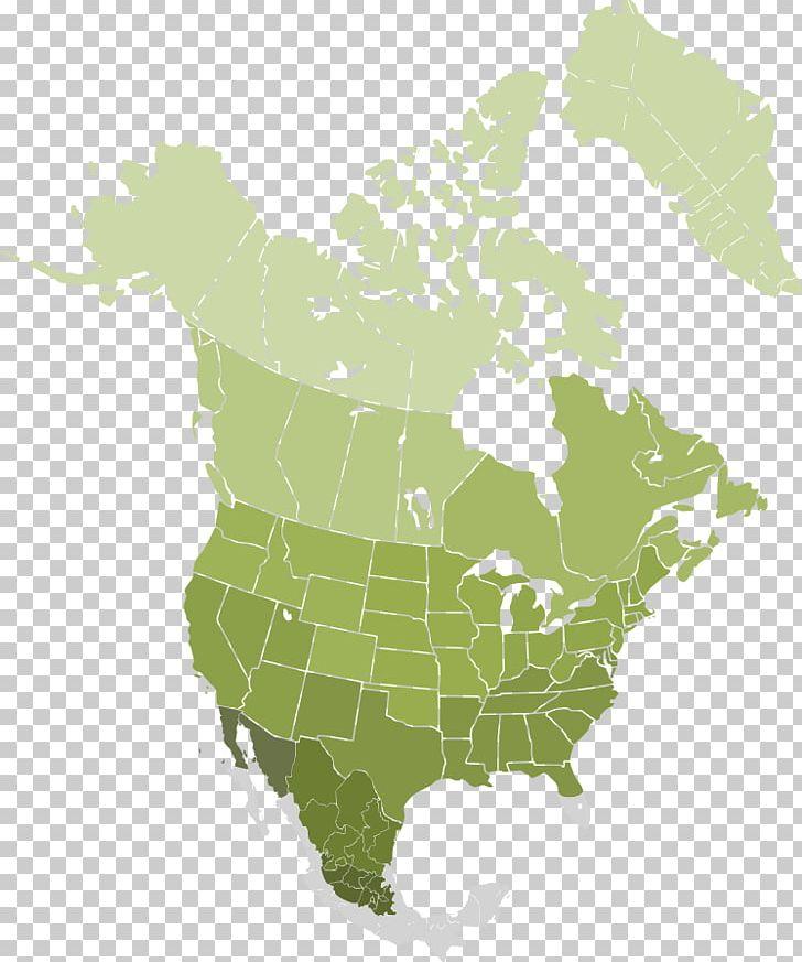 Mexico–United States Border Canada West Coast Of The United ...