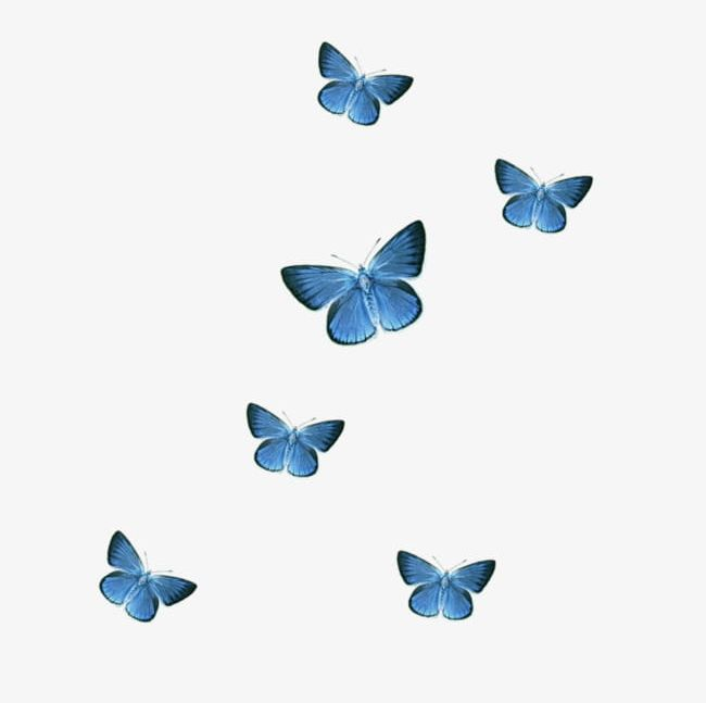 Blue Butterfly PNG, Clipart, Animal, Blue, Blue Clipart, Blue