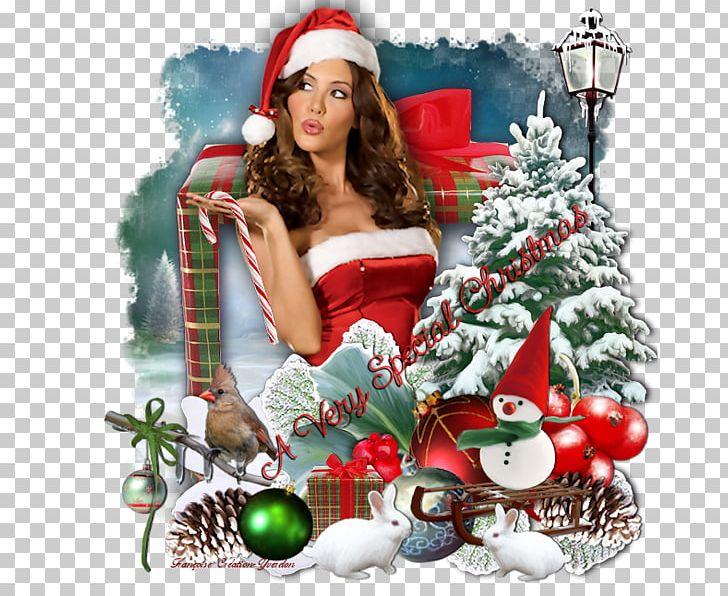 Studio C Christmas.Christmas Tree Photography Christmas Ornament Studio Png