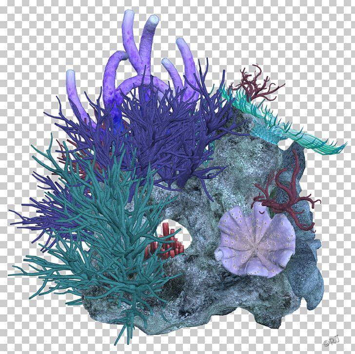 Coral Reef Deep Sea PNG, Clipart, Aquarium Decor, Christmas Ornament, Coral, Coral Reef, Deep Sea Free PNG Download
