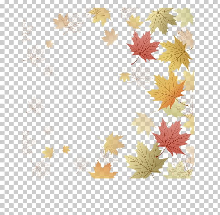 Paper Maple Leaf Japanese Maple Autumn Leaf Color PNG, Clipart, Autumn, Autumn Leaf Color, Border, Floral Design, Flower Free PNG Download