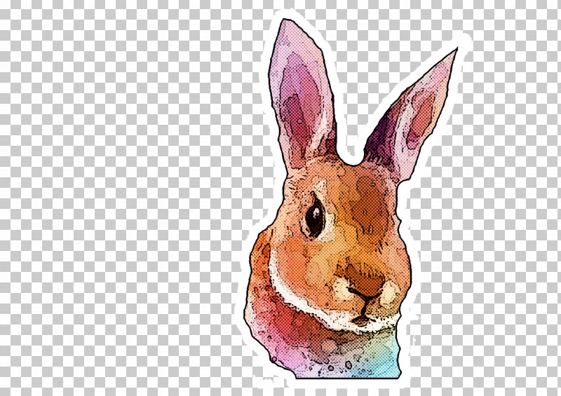Rabbit Rabbits And Hares Hare Watercolor Paint Wood Rabbit PNG, Clipart, Animal Figure, Hare, Rabbit, Rabbits And Hares, Snout Free PNG Download