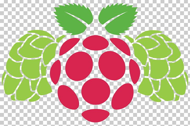 Raspberry Pi Graphics Portable Network Graphics Logo PNG, Clipart, Circle, Computer Icons, Encapsulated Postscript, Flower, Flowering Plant Free PNG Download