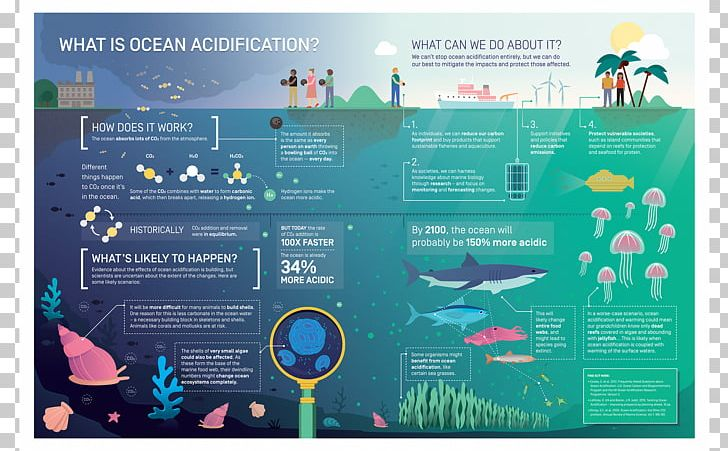 Ocean Acidification Global Warming Carbon Dioxide PNG, Clipart, Advertising, Art, Brand, Display Advertising, Global Warming Free PNG Download