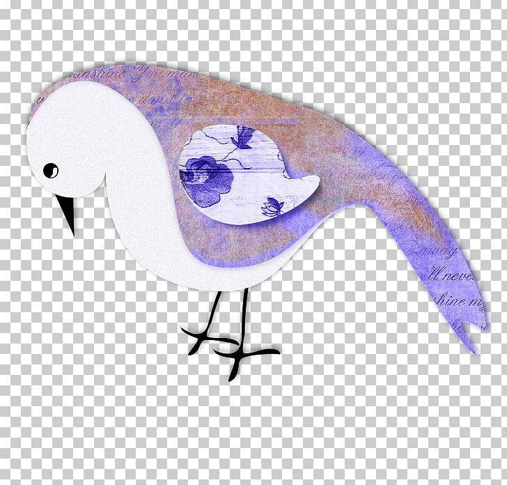 Beak Water Bird Fauna Feather PNG, Clipart, Animals, Beak, Bird, Fauna, Feather Free PNG Download