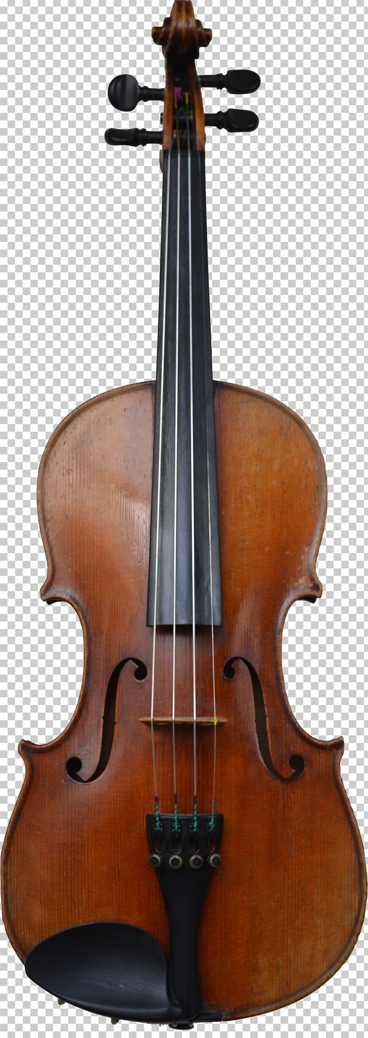Cello Violin Family Musical Instrument Viola PNG, Clipart, Acoustic Electric Guitar, Antonio Stradivari, Bass Guitar, Bass Violin, Bow Free PNG Download