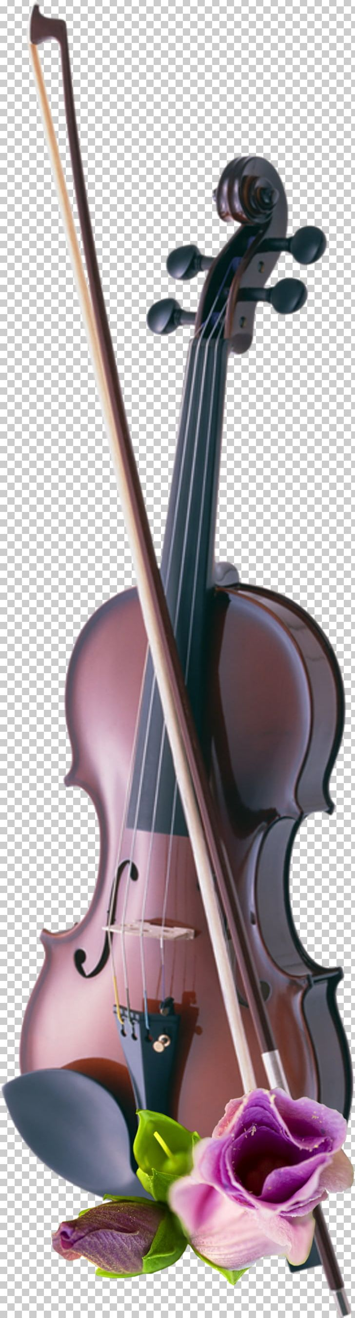 Cello Violin Musical Instruments String Instruments PNG, Clipart, Bowed String Instrument, Cello, Digital Image, Floral Design, Music Free PNG Download