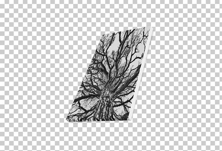 Tree Wood /m/083vt Rectangle Black M PNG, Clipart, Black, Black And White, Black M, M083vt, Monochrome Free PNG Download