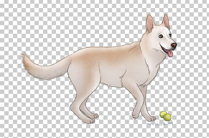 Dog Breed Canaan Dog Siberian Husky PNG, Clipart, Animals, Breed, Canaan Dog, Carnivoran, Dog Free PNG Download