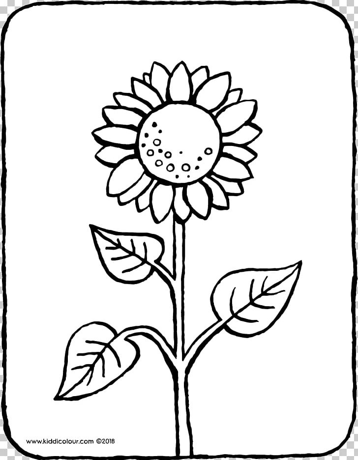 Common Sunflower Coloring Book Colouring Pages Ausmalbild Drawing Png Clipart Animal Area Art Artwork Ausmalbild Free