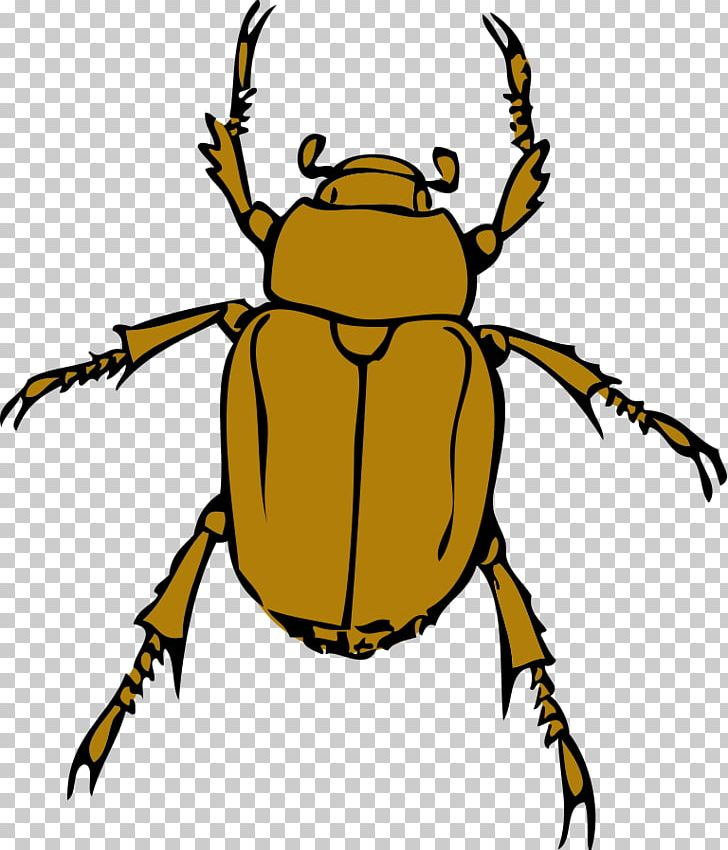 Scalable Graphics PNG, Clipart, Arthropod, Artwork, Beetle, Bugs Clipart, Computer Icons Free PNG Download