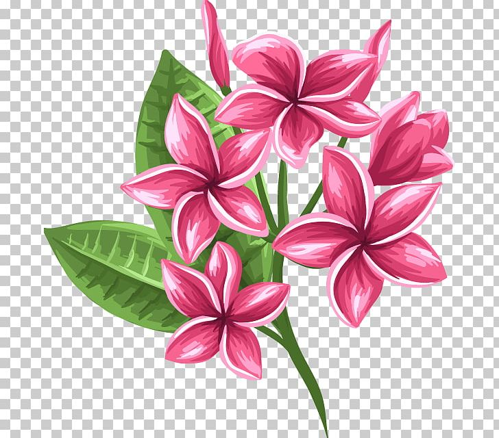 Floral Design Cut Flowers Petal PNG, Clipart, Cut Flowers, Floral Design, Floristry, Flower, Flower Arranging Free PNG Download