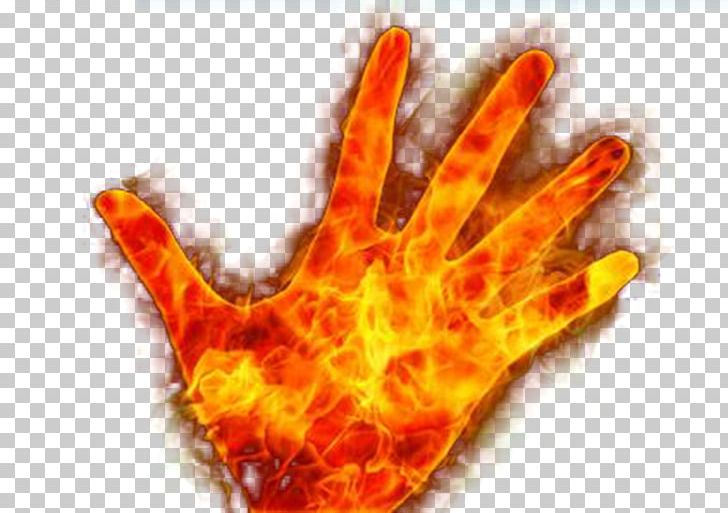Flame Combustion Hand Euclidean Png Clipart Combustion Designer Dlan Download Euclidean Vector Free Png Download Now by using nik collection give it some effects like dark contrast, indian summer and contrast color change. flame combustion hand euclidean png