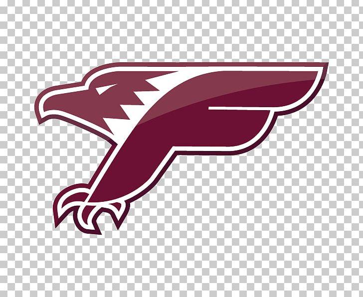 2012 Atlanta Falcons Season Les Falcons De Bron Villeurbanne Lyon  free shipping