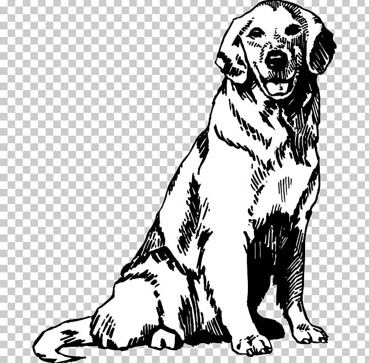 Free Golden Retriever Puppy Coloring Pages Printable, Download ... | 717x728