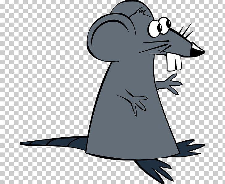 Mouse Cheese PNG, Clipart, Amphibian, Animals, Beak, Bird, Cartoon Free PNG Download