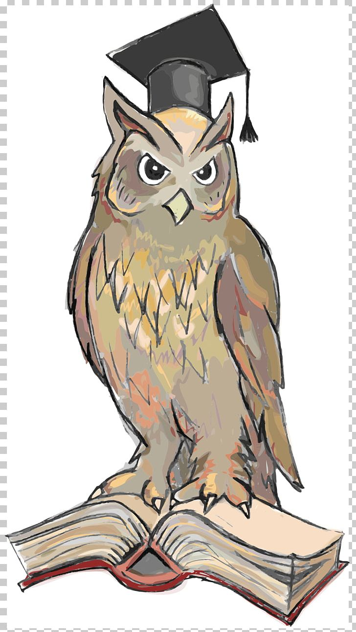 Bird Symbol Wisdom Snowy Owl True Owl Png Clipart Animals