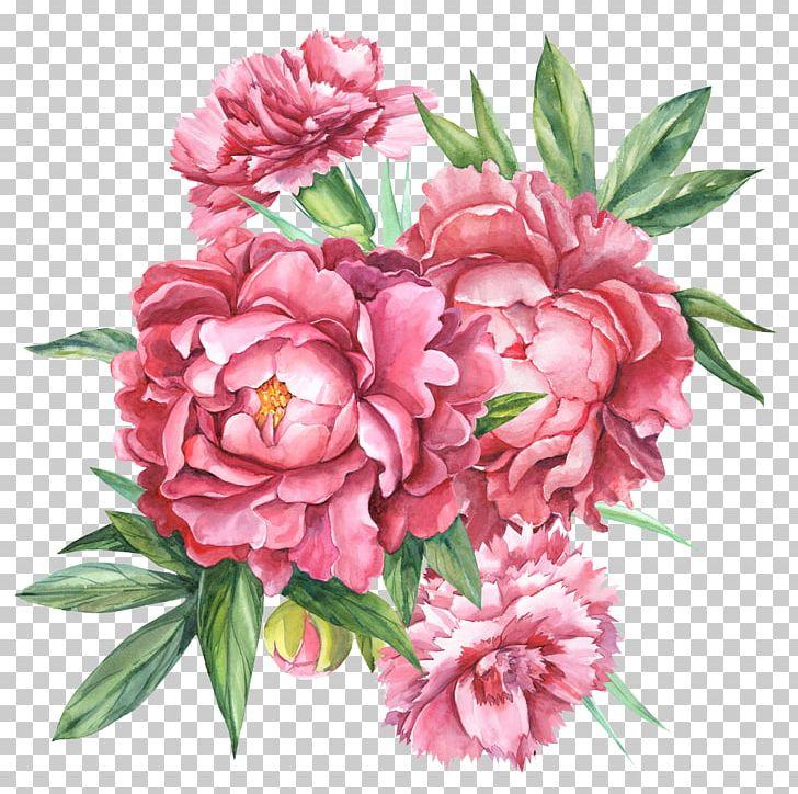 Floral Design Carnation Botanical Illustration Flower Bouquet Botany PNG, Clipart, Annual Plant, Art, Artificial Flower, Blume, Botanica Free PNG Download