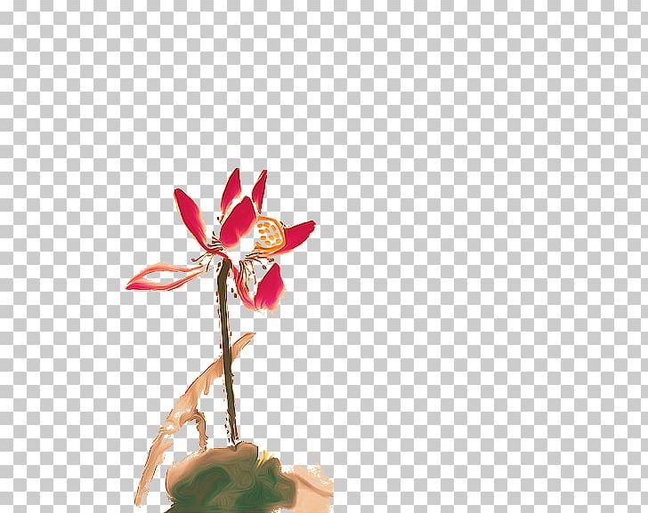 Nelumbo Nucifera Petal PNG, Clipart, Cut Flowers, Daffodils, Download, Flora, Floral Design Free PNG Download