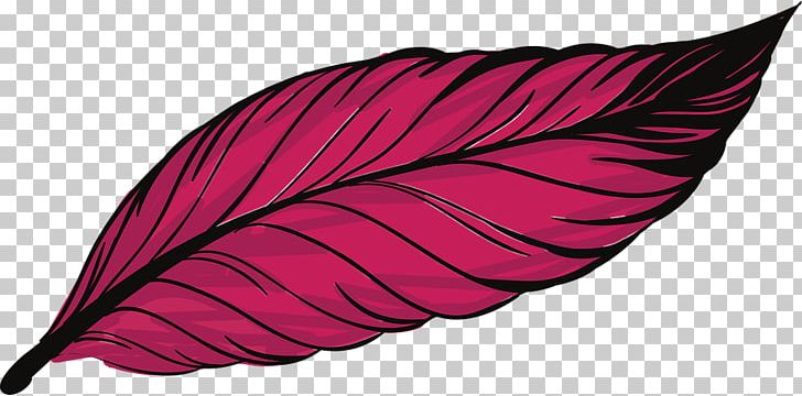 Bird Feather Peafowl PNG, Clipart, Asiatic Peafowl, Bird, Couple, Euclidean Vector, Feather Free PNG Download