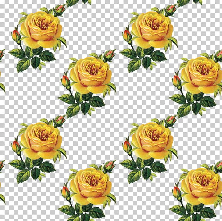 Flower Bouquet Garden Roses Floral Design Cut Flowers PNG, Clipart, Cut Flowers, Diary, Floral Design, Floristry, Flower Free PNG Download