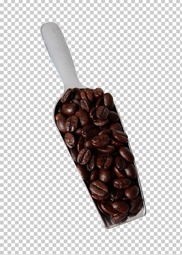 Coffee Bean Cafe Coffee Cup PNG, Clipart, Bean, Beans, Cafe, Chocolate, Cocoa Bean Free PNG Download