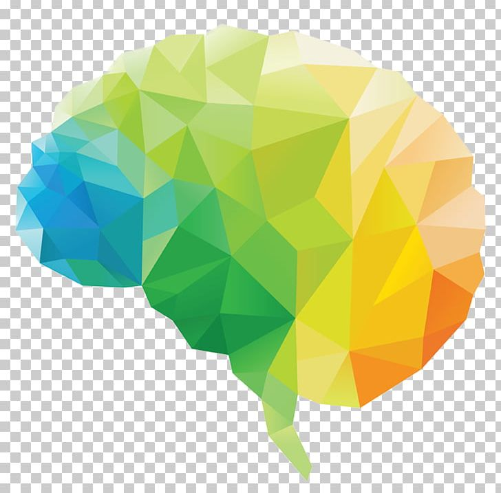 Human Brain Polygon Lobes Of The Brain PNG, Clipart, Brain, Brain Damage, Depositphotos, Green, Gut Free PNG Download