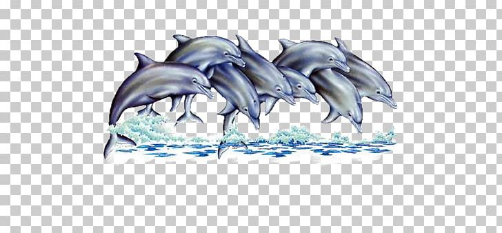 Dolphin Dauphin Of France Animal Png Clipart Animal