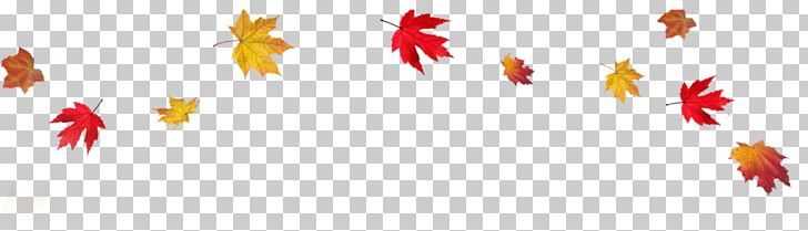 Autumn Leaf Color Desktop PNG, Clipart, Autumn, Autumn Leaf Color, Clip Art, Computer, Computer Wallpaper Free PNG Download