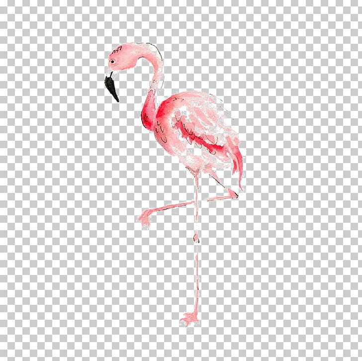 Flamingo watercolor. Painting drawing png clipart