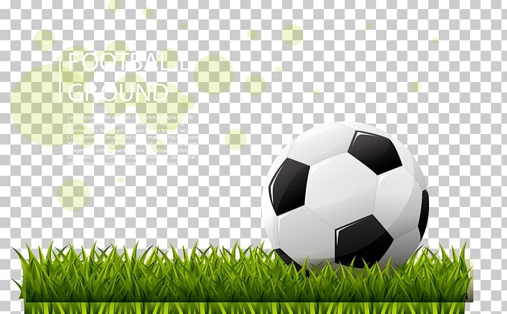 FIFA World Cup Football Pitch Stadium PNG, Clipart, Ball, Brand, Computer Wallpaper, Court, Download Free PNG Download