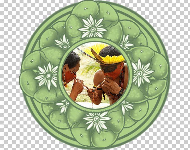 Ayahuasca Spirituality Shamanism Retreat Healing PNG