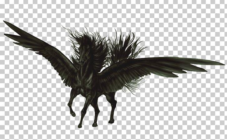 Flying Horses Pegasus Aile Black Png Clipart Aile Animal Black