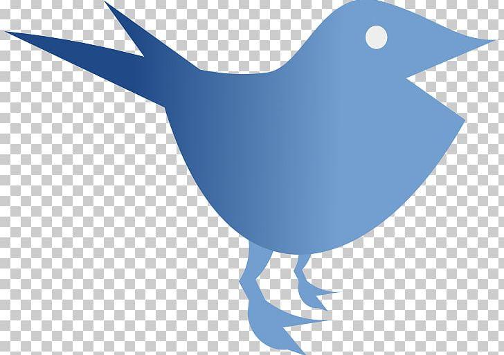 Others Fauna Bird PNG, Clipart, Art, Artwork, Beak, Bird, Computer Icons Free PNG Download