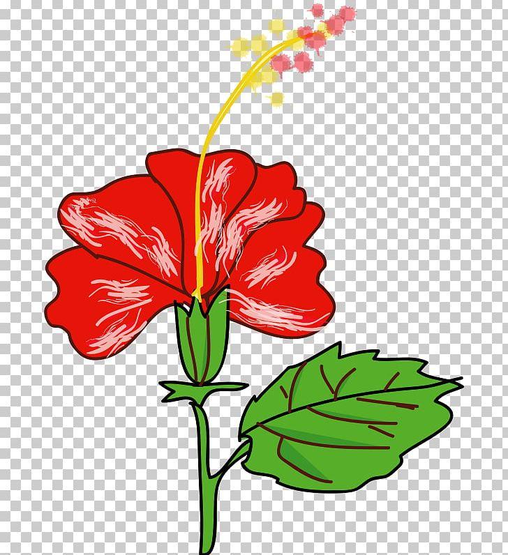 Shoeblackplant Flower Hawaiian Hibiscus Drawing Png Clipart
