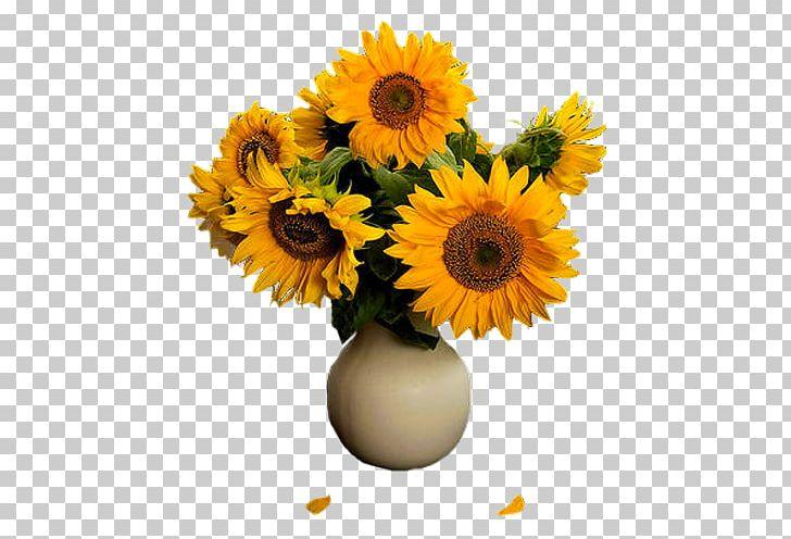 Common Sunflower Floral Design Transvaal Daisy Flowerpot Cut Flowers PNG, Clipart, Artificial Flower, Daisy Family, Floristry, Flower, Flower  Free PNG Download
