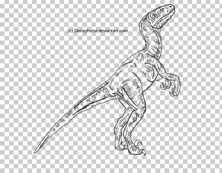 Velociraptor Jurassic World Evolution Tyrannosaurus Jurassic Park Line Art PNG, Clipart, Arm, Artwork, Black And White, Coloring Book, Dinosaur Free PNG Download