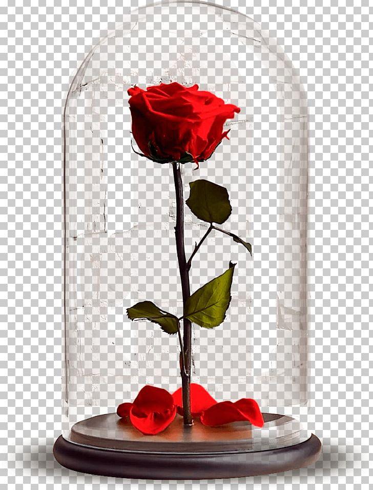 257 & Garden Roses Laboratory Flasks Hydroponics Бутон Flower PNG ...