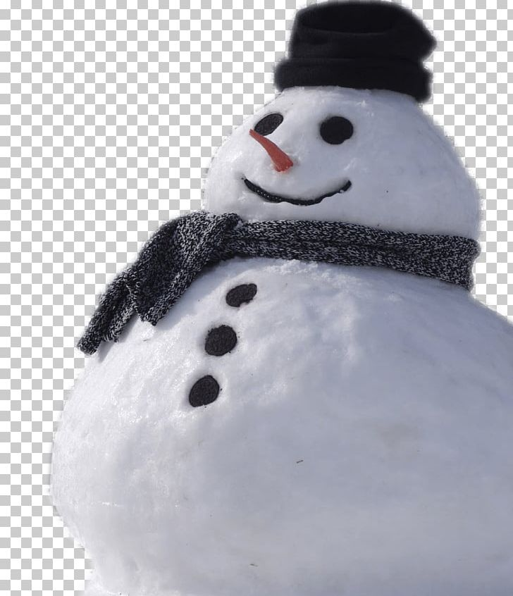 Snowman Real PNG, Clipart, Holidays, Winter Season Free PNG Download