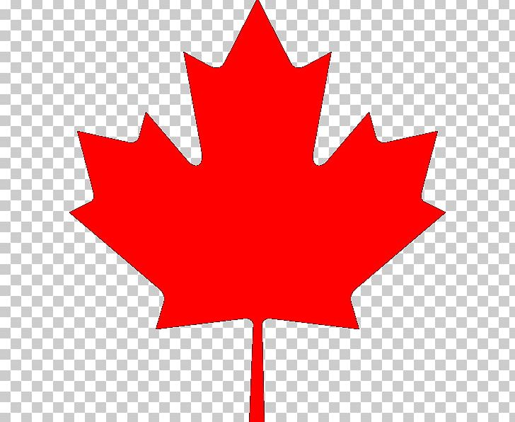 Flag Of Canada Maple Leaf National Flag PNG, Clipart, Canada, Flag, Flag Of Canada, Flower, Flowering Plant Free PNG Download
