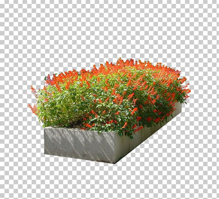 Flower Garden PNG, Clipart, Bed, Download, Flower, Flower