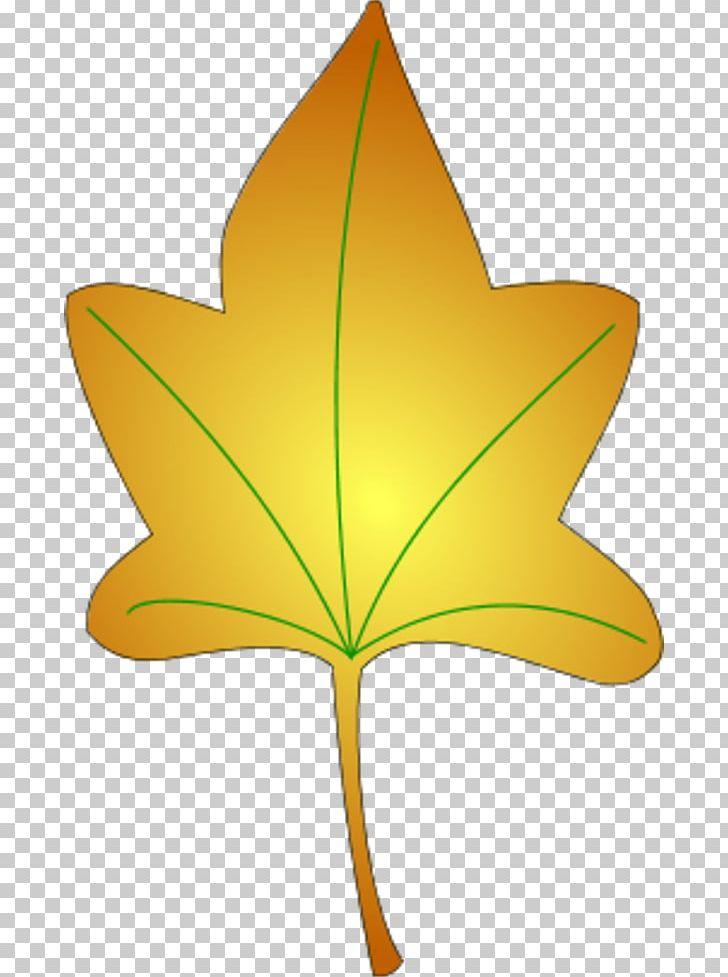 Autumn Leaf Color PNG, Clipart, Autumn, Autumn Leaf, Autumn Leaf Color, Color, Flower Free PNG Download