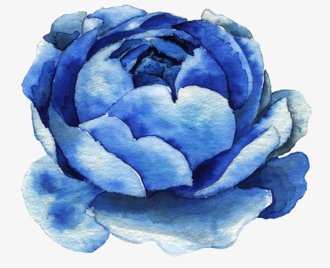 Blue Watercolor Flowers Png Clipart Backgrounds Blue