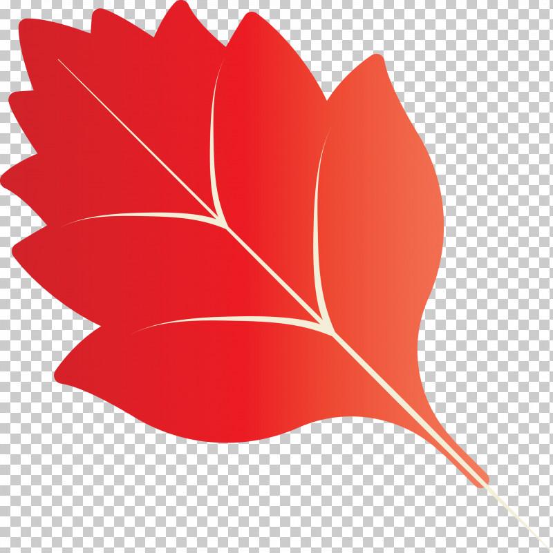 Autumn Leaf Autumn Color PNG, Clipart, Autumn Color, Autumn Leaf, Biology, Computer, Leaf Free PNG Download