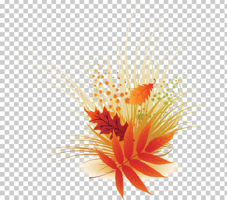 Maple Leaf Autumn Leaf Color Green PNG, Clipart, Aquarium Decor, Autumn, Autumn Leaf Color, Cut Flowers, Flower Free PNG Download